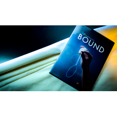 Bound by Will Tsai and SansMinds - Trick