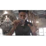Flight by Kevin Li and Shin Lim Presents - Trick